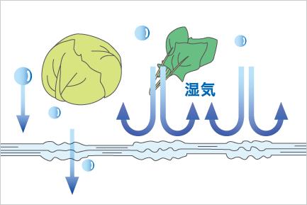 湿度が低いときは乾燥防止